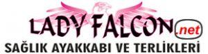 www.ladyfalcon.net